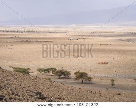 Landscape In Tanzania
