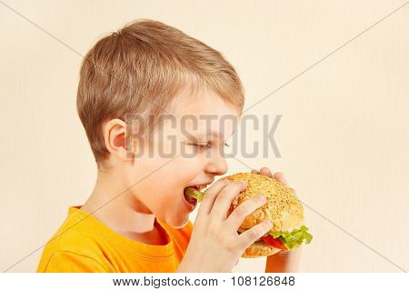 Little funny boy eating tasty sandwich