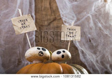 Champignons On Halloween Pumpkin Top