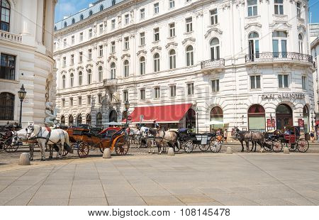 Horse Carriage In Vienna - Austria