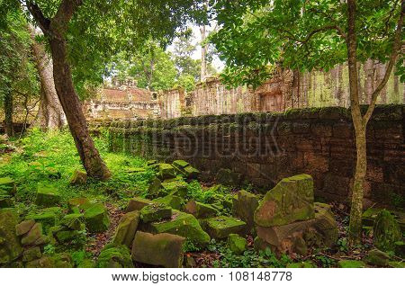 The Ancient Stones And The Wall, The Ravages Of Time And Nature Of The Jungle.