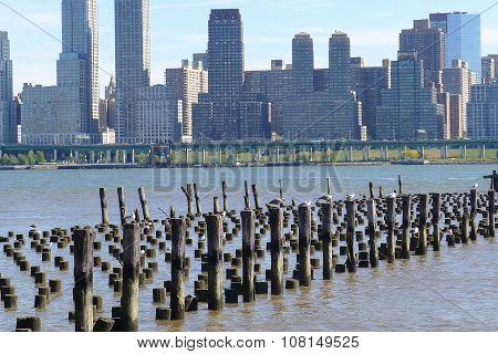 Wooden Piles on Hudson River