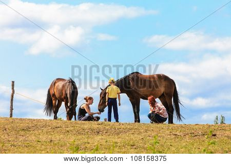 People Taking Care Of Horse.