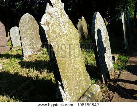 spooky gravestones halloween dark summer