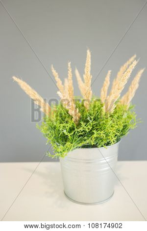 Simply Plant Bucket Decorated On The Table