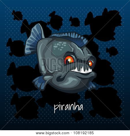Carnivorous piranha grins on a dark background