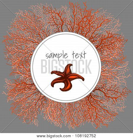 Texture of brown coral with oval frame for text