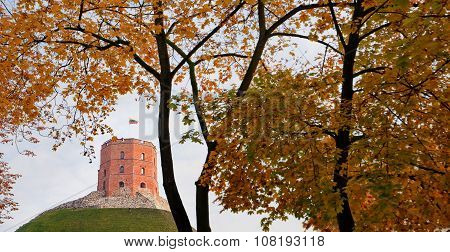 Gediminas Castle In Vilnius