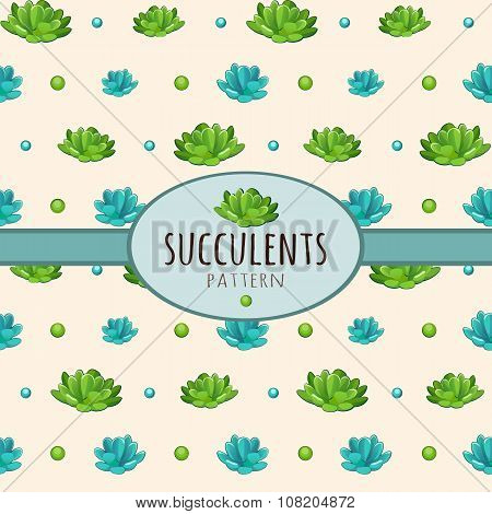 Succulents, background with oval frame for text