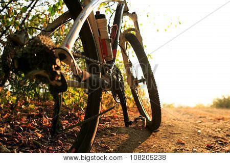 Detail of cyclist man feet riding mountain bike on outdoor