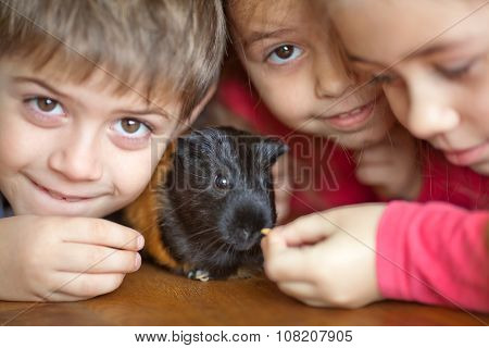Children And Guinea Pig