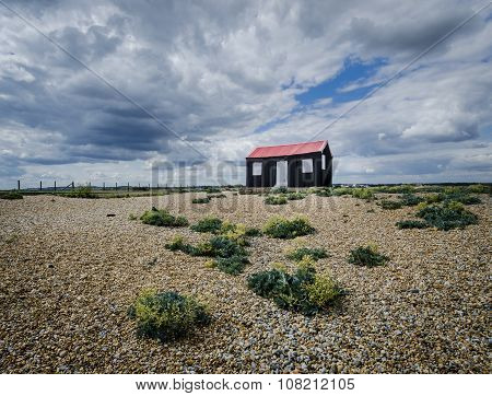 Shed At Rye Harbour