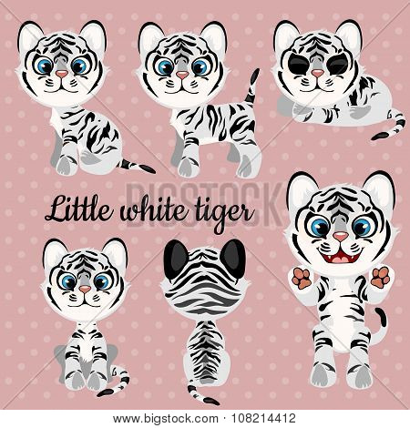 Set of emotions a little white tiger