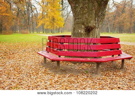 Unusual Bench