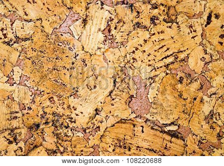 The structure of cork coverings