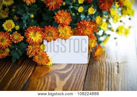 Beautiful Bouquet Of Bright Chrysanthemums