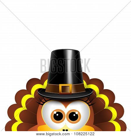 Cartoon turkey in a pilgrim hat. Card for Thanksgiving Day