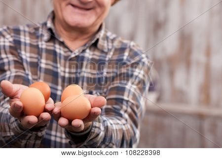 Cheerful mature farm worker with organic products