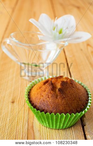 Muffin And White Flower