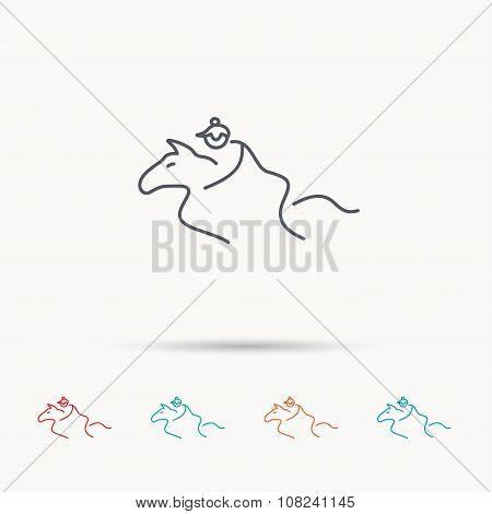Horseback riding icon. Jockey rider sign.