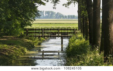 Small Wooden Bridge Reflected In A Stream