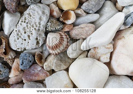 Sea Pebbles With Shells