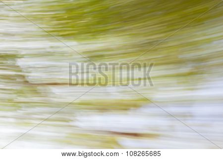 Fresh Healthy Green Background With Abstract Blurred Foliage In Summer Time.