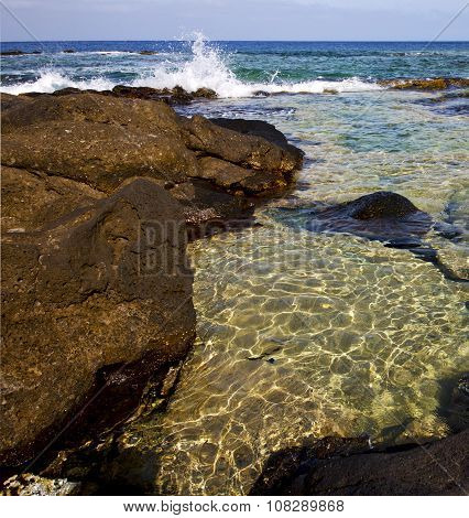 Froth Coastline In Lanzarote Spain Pond   Musk  And Summer