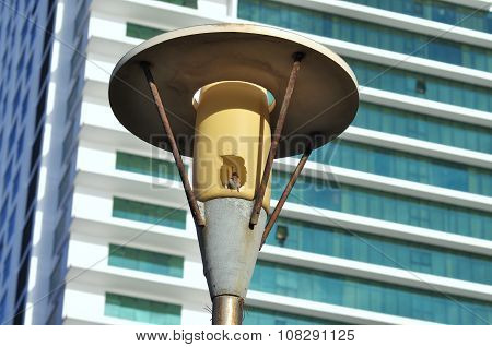 Nha Trang Vietnam - July 14 2015: A bird is standing on a hole in a streetlight in the Nha Trang cit