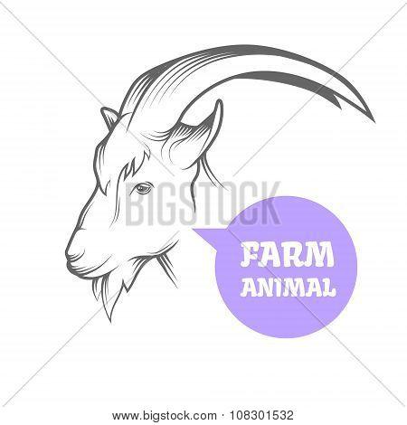 Goat vector head