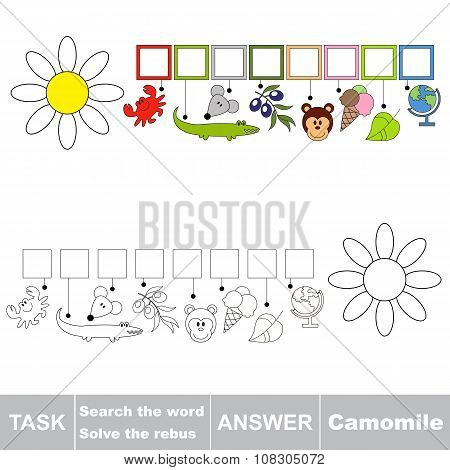 Vector game. Find hidden word Camomile. Search the word.