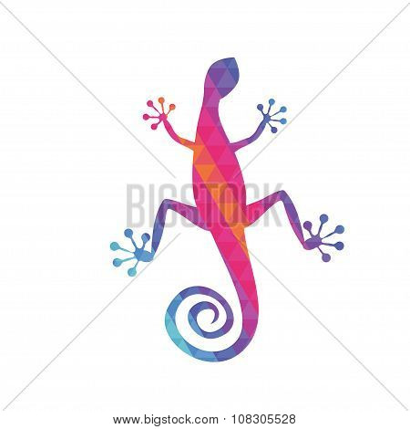 Gecko With Coloured Triangle Pattern