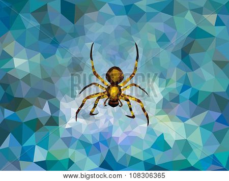 Polygonal spider