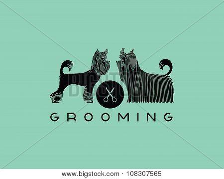 Pet Grooming 6