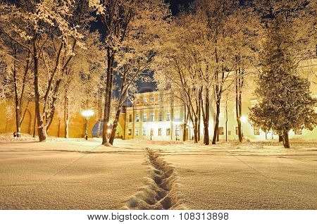 The Winter Evening In The City Park - Winter Landscape