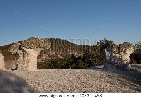 Bulgaria. Stone Mushrooms
