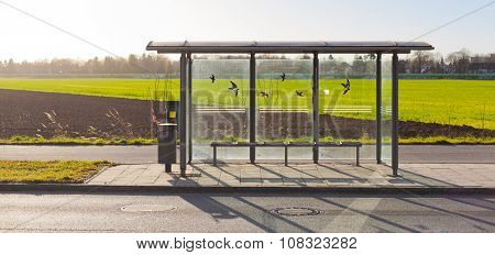 Bus Stop With Glass Windows And Bird Sticker