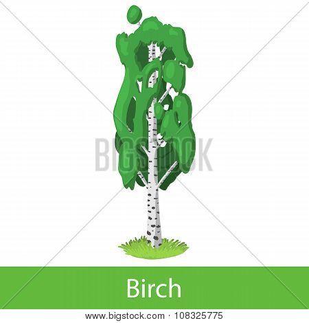 Birch cartoon tree