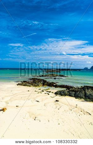 Heavenly Cove Sunny Shore