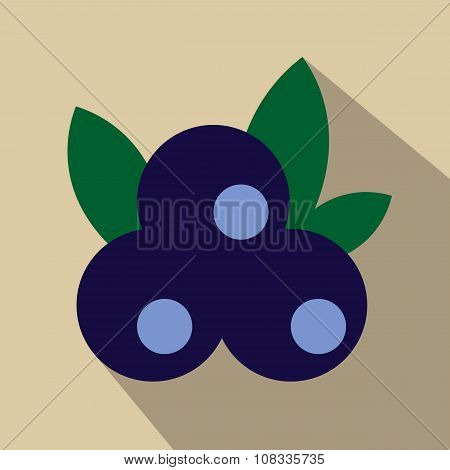 Blueberries flat icon