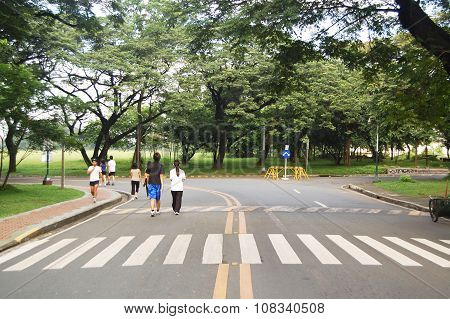 University of the Philippines pedestrian lane