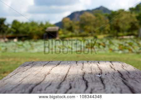 Cement Bench In Wood Like Surface With Blur Garden Background