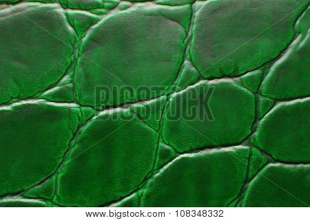 green leather macro texture background