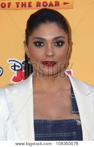 LOS ANGELES - NOV 14:  Rachel Roy at the