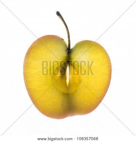 Back Lit Apple Slice