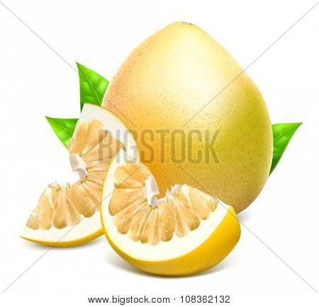 Whole pomelo with slices with green leaves. Vector illustration