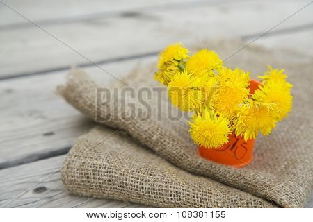 Dandelion Blossoms In A Decorative Bucket