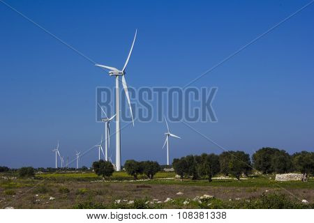 Wind farm rural