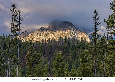 The Forest And A Mountain Peak.