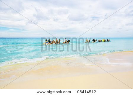 The Group Of Tourists Riding Horses In Caribbean Sea On Half Moon Cay, The Bahamas.